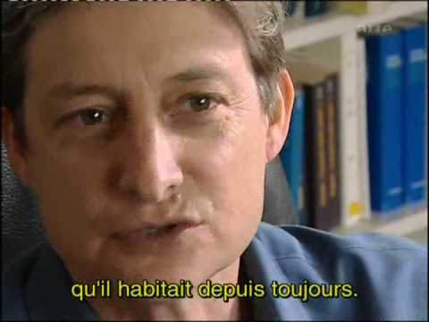 Judith Butler: Part 3/6