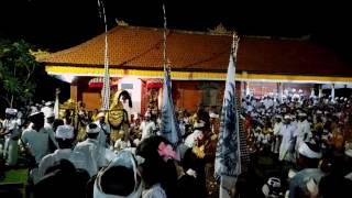 # balinese culture barong dance pura dalem desa belumbang kerambitan..