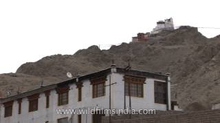 View of a Ladakhi town hemmed in barren mountains - Kashmir