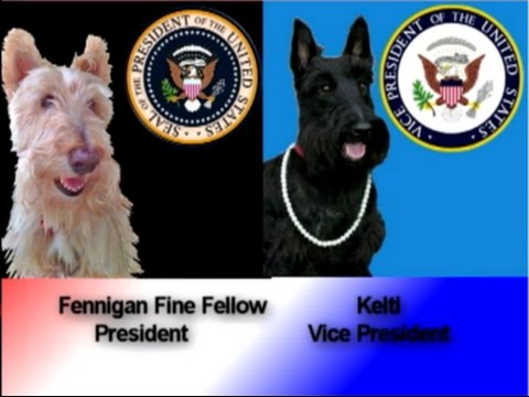 Scotties in the White House