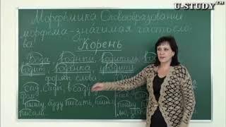 Подготовка к ЕНТ: Русский язык (Морфемика, Словообразование, Корень )