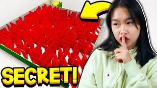 I FOUND MY SISTER'S *SECRET* BLOXBURG CHRISTMAS MAZE!! (Roblox)