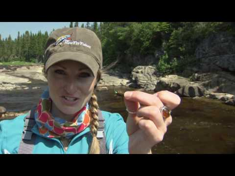 Atlantic Salmon At Tuckamore Lodge | Newfoundland