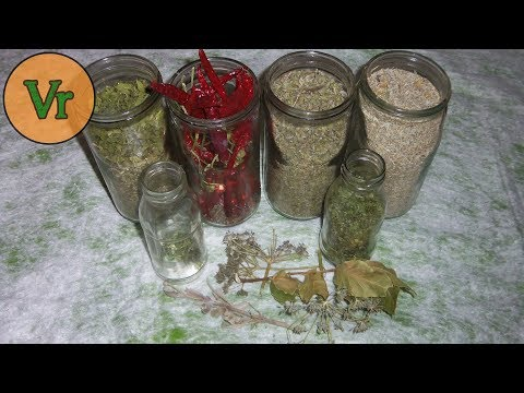 Comment Sécher Les Plantes Aromatiques En Préservant Leur Valeur Nutritionnelle