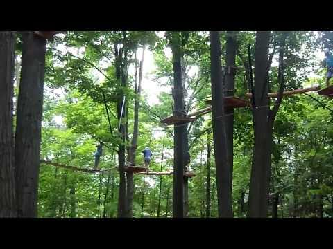 My treetop trekking adventure