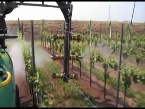 Üzüm (bağ,asma) yetiştiriciliği ve süper ilaçlama makinası...USAGRO  Türkiye