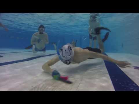 Underwater Hockey (Octopush)
