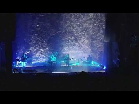 Grizzly Bear - Four Cypresses (Live)
