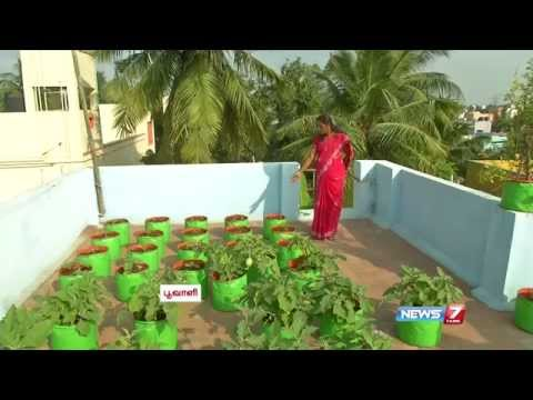 How to make a wonderful vegetable garden in the terrace for Terrace vegetable garden by harikumar