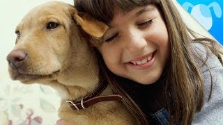 7 Reasons Your Kid Needs a Dog