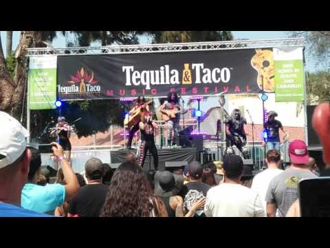 Metalachi at the Tequila & Taco Music Festival
