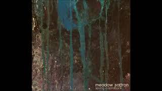 "MEADOW SAFFRON - ""Saving A Sandbank"" (full album)"