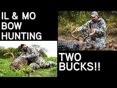 Two Bow Kills | Early Season And Pre Rut Hunting In Illinois And Missouri