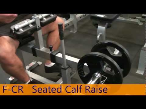 F-CR SEATED CALF RAISE MACHINE Gym Equipment From Force USA
