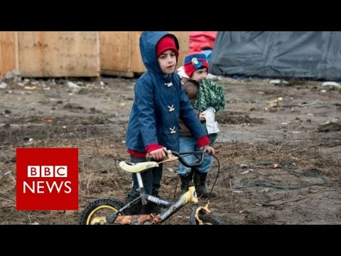 Who should take in refugees? BBC News