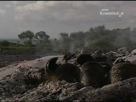 Ray Mears Extreme Survival S01E06 - Arnhemland [LEKTOR PL]