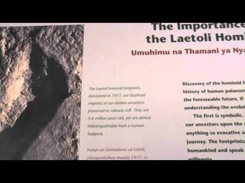 Tanzania   Oldupai Gorge   Discovery of Early Man #6   18 Sept '14