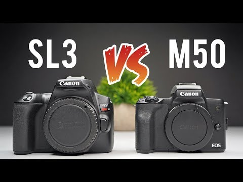 Canon SL3 (250d) vs M50 Ultimate Comparison