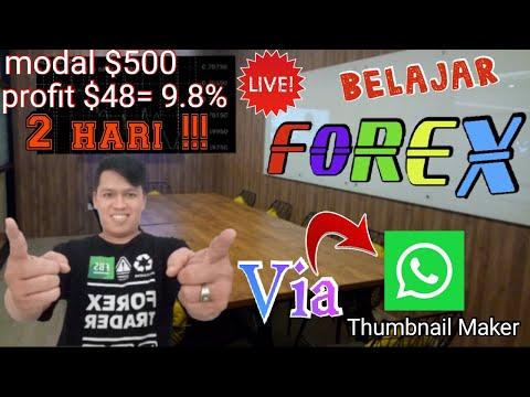 belajar-forex-via-whatsapp