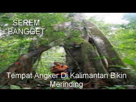 3 Tempat Angker Di Kalimantan Bikin Bulu Kuduk Merinding, Yang Konon Menjadi Pusat Mahluk Astral