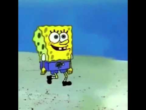 SpongeBob song vine