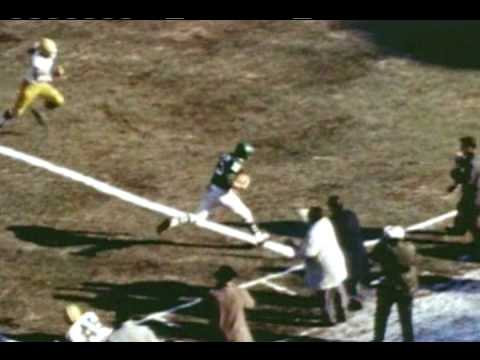 Philadelphia Eagles Brief History