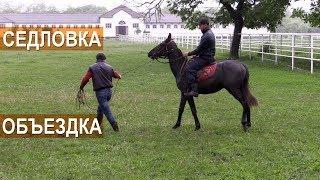 Седловка и объездка лошади Кабардинской породы. Агроэкспедиция по Кабардино-Балкарии