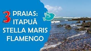 vuclip 3 Praias de Salvador: Itapuã, Stella Maris e Flamengo | Fê Rabaglio