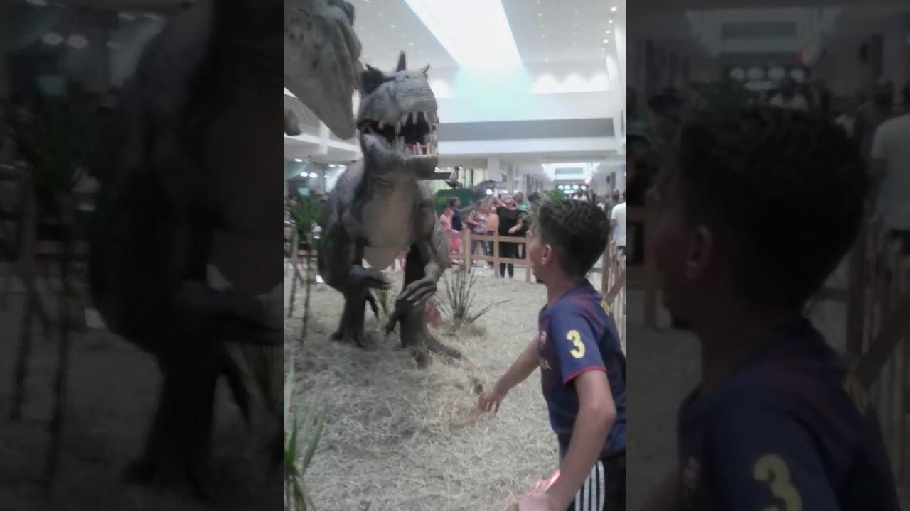 Dinossauros Reais Youtube