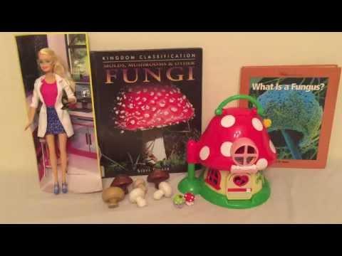 Barbie Scientist and Fungi