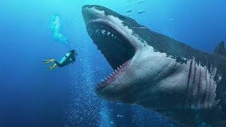 #6 마리아나 해구에서 정말 살아있는 메갈로돈 상어가 발견됐나요?