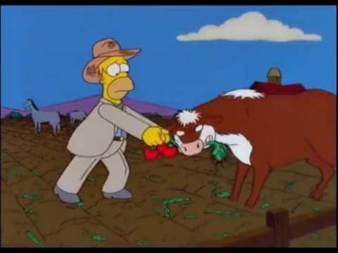 Homero el Granjero (parte 3) Los Simpson
