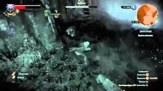 Ведьмак 3: Дикая Охота прохождение [12] Дикое сердце