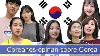 ¿ Qué opinan los coreanos de Corea del Sur ?