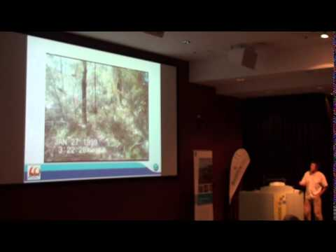 Miguel Cruz (CSIRO) - A model for fire propagation and vertical transitions in eucalypt forests