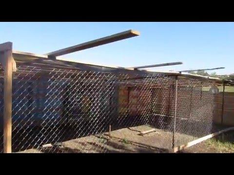 Видео как построить гусятник
