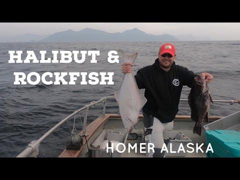 Halibut & Rockfish Fishing In Homer Alaska