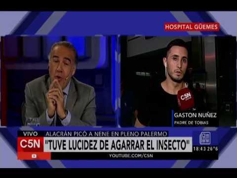C5N - El Diario: Un alacrán atacó a un nene en Palermo