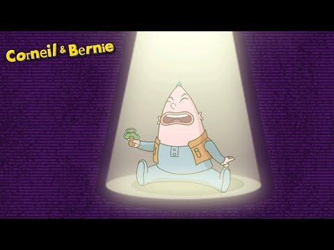 Corneil et Bernie - Compilation 2 heures (SAISON 2)