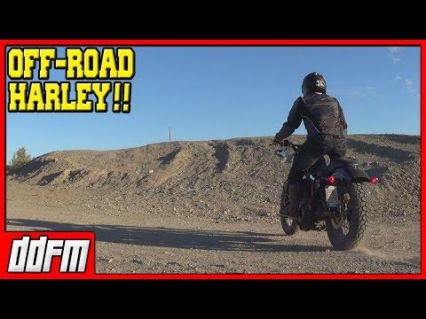 Off Road Harley Davidson Sportster Trail Riding / Adair Road / Saturday Scrambler #3
