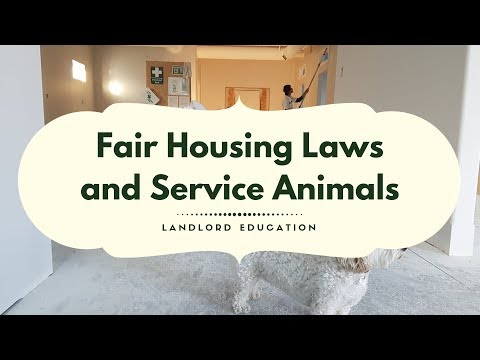 Fair Housing, Service Animals, and Companion Animals – Colorado Springs Landlord Tips