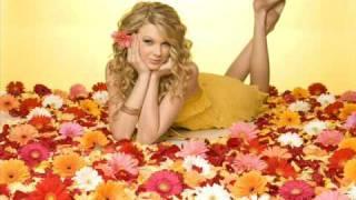 Taylor Swift - Teardrops On My Guitar (Instrumental with lyrics in info box)