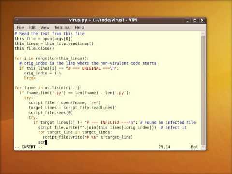 Python virus