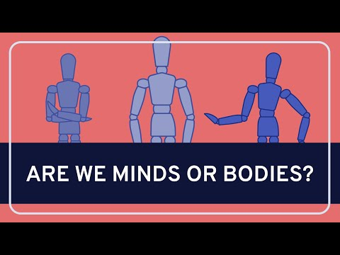 the arguments on the theory of mind body dualism Dualism, cartesian interactionist - the view that: (1) the mental and the  he  offered several different proofs or arguments none of which are convincing today   c double aspect theory-there is one substance with two aspects (mind/body.