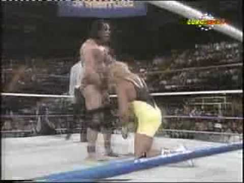 M.R.Perfect vs Superfly