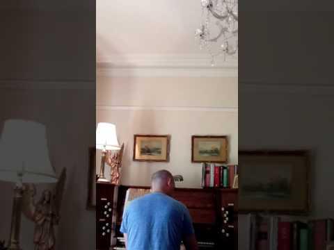 Apollo Reed Organ