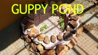 make simple guppy fish pond on terrace with tyre and enjoy the beauty