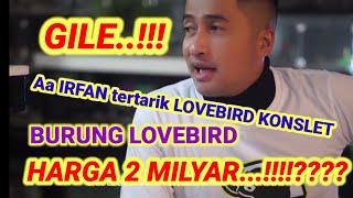 Download lagu LOVEBIRD  2 M .?? Pancingan aa irfan hakim om aris  nyaut Cara ampuh PROSES CETAK LOVEBIRD KONSLET