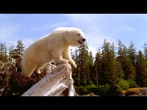 ALASKA – Adventure, Family Movie // Full Movie