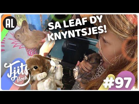 SPRINGEN deze konijnen TOUWTJE? // Tjits Vlog #97